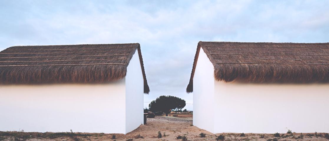 Neboa Atlantic Culture
